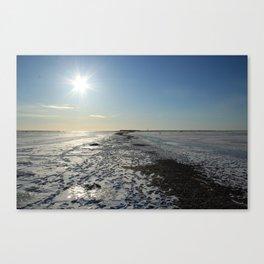 Frozen Sea in a Cold Winter Day Canvas Print