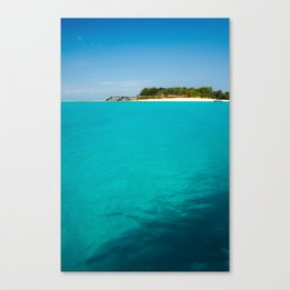 Paradise, straight ahead Canvas Print