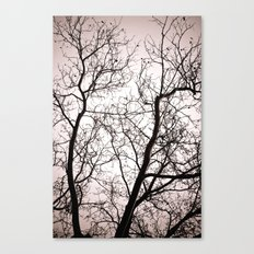 Branches in Winter Canvas Print