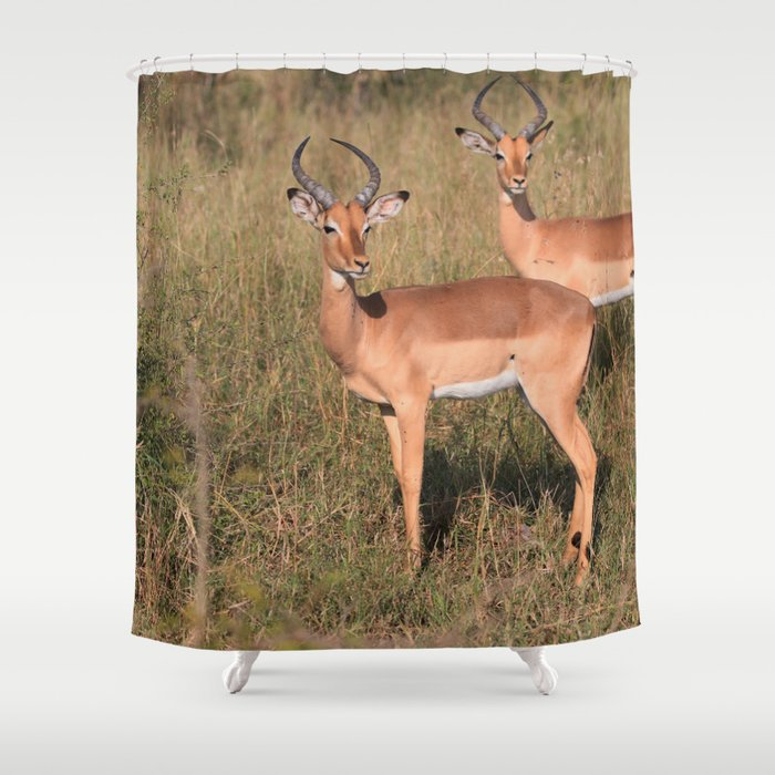 Boys Looking for Girls Shower Curtain