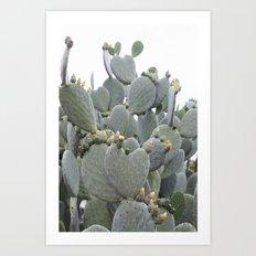 Cactus Flower at Heart Art Print