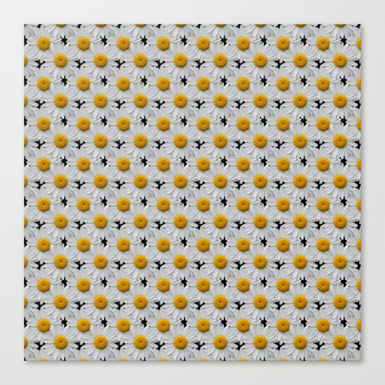 DAISY CHAINS Canvas Print