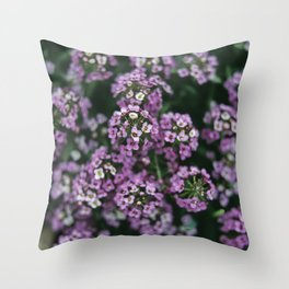 Detail of tiny pink flowers growing in an english garden. UK. (Shot on film). Throw Pillow
