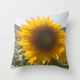 Sunflower (1) Throw Pillow