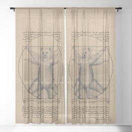 The Vitruvian Bear Sheer Curtain