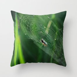 SPYDER ON GREEN Throw Pillow