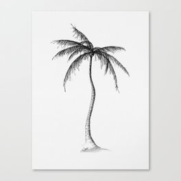 Palm Tree, Illustration Canvas Print