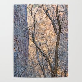 WARM WINTER WALLS OF ZION CANYON Poster