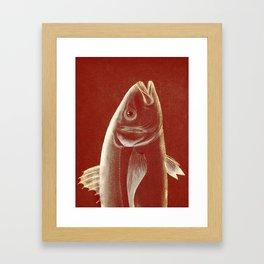 Piscibus 2 Framed Art Print