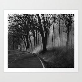 Blazing Trail Art Print