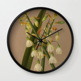 Aendsen, Arentine H. (1836-1915) - Haarlem's Flora 1872 - Hyacinthus Candicans Wall Clock