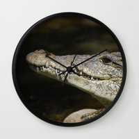 crocodile Wall Clocks featuring Crocodile  by Bunny+Bear Photography