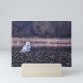 Turning Heads Mini Art Print