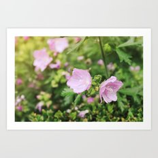 Dew Drop Flowers Art Print