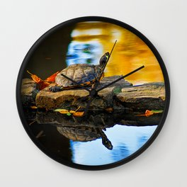 Turtle on the stone Wall Clock