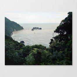 New Zealand Coast Canvas Print