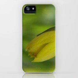little pleasures of nature -8- iPhone Case