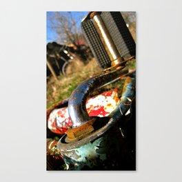 Rustic Pedal Canvas Print