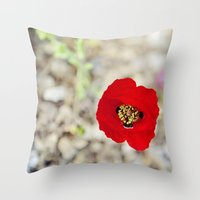 israel Throw Pillows featuring Vibrant Red Poppy, Israel by Kim Lucian Photography