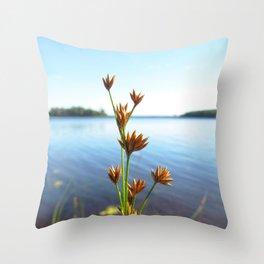 Watercolor Seed, Sedge 01, Kejimkujik, Nova Scotia, Canada Throw Pillow
