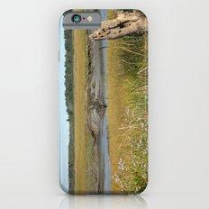 Scarborough Marsh iPhone 6s Slim Case