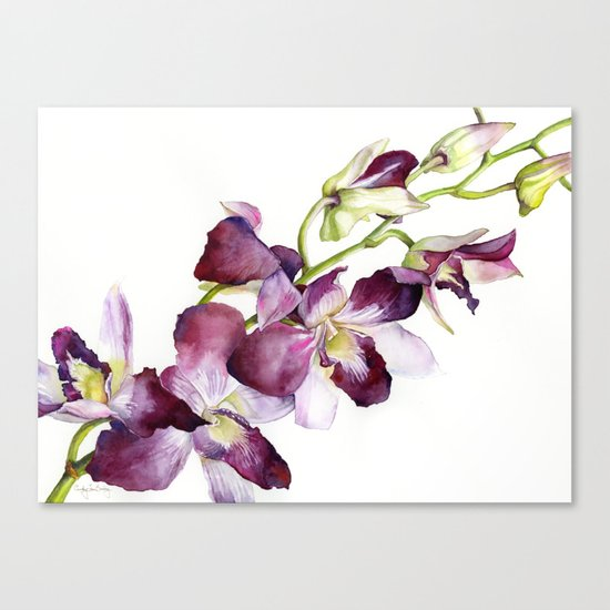 Radiant Orchids: Magenta Dendrobiums Canvas Print