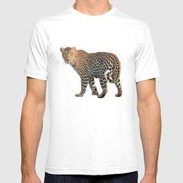 Leopard (animal, nature) T-shirt