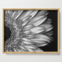 Black And White Print of Gerber Daisy Serving Tray