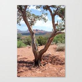 Arizona Horizon - Sedona Red Rocks Canvas Print