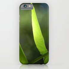 Light through the Leaves iPhone 6 Slim Case