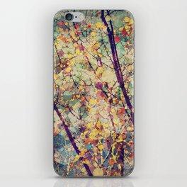 Seasons Circles and Cubes iPhone Skin