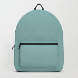 Ice Blue Solid Backpack