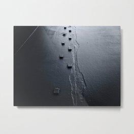 Migration Metal Print