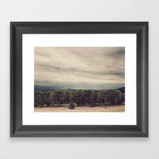 Orange Groves Framed Art Print