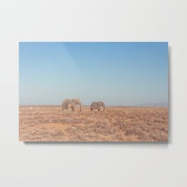 Elephants in South Africa Metal Print