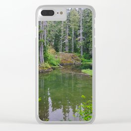 Tarn Clear iPhone Case