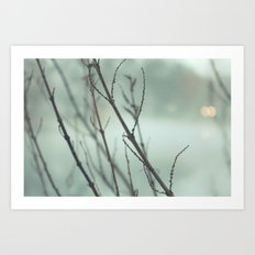 through the haze . . .  Art Print