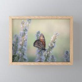 Monarch Butterfly XXII Framed Mini Art Print