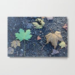 Inverted Leaves on Gravel in Autumn Metal Print