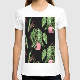 Polka Dot Begonia Potted Plants in Black T-shirt
