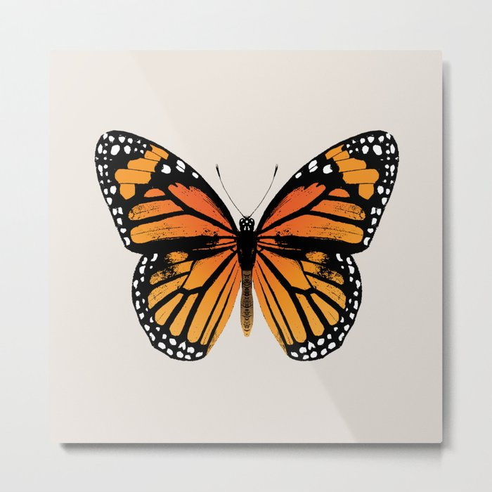Monarch Butterfly   Vintage Butterfly   Metal Print