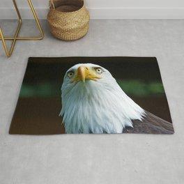 Bald Eagle Head Rug
