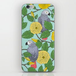 African Greys iPhone Skin