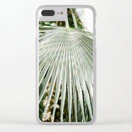Botanical garden close up   Palm leaf detail   Fine art photography print Clear iPhone Case