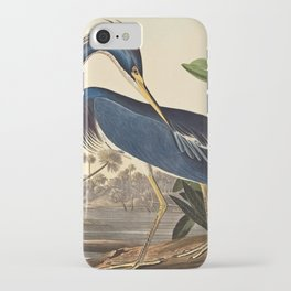 John James Audubon - Louisiana Heron iPhone Case