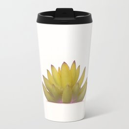 Cactus in flower pot on white background Travel Mug