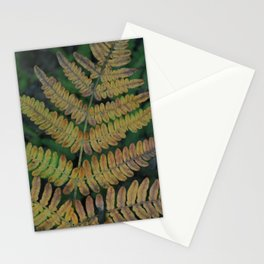 Moody Fern in Santa Cruz Forest Stationery Cards