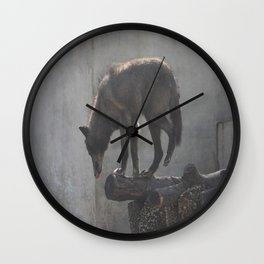 How do I get down? Wall Clock