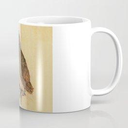 Albrecht Durer The Little Owl Coffee Mug