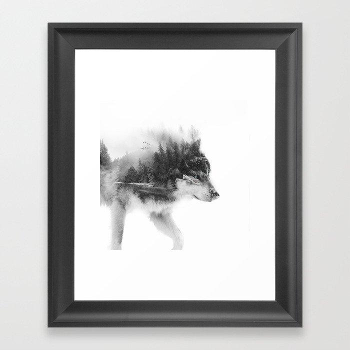 Wolf Stalking Gerahmter Kunstdruck